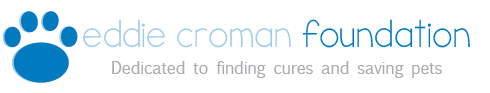 Eddie Croman Foundation Logo